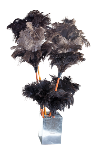 feather duster display