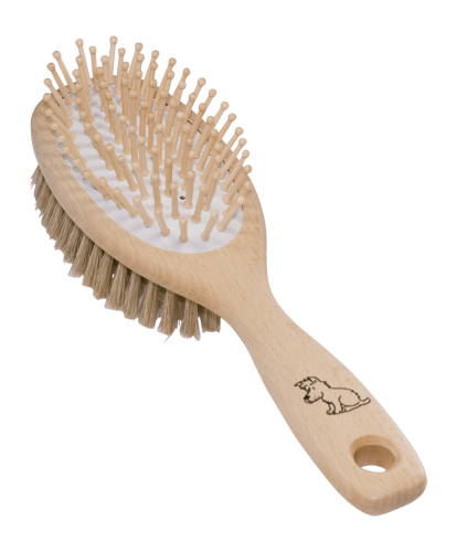 dog brush